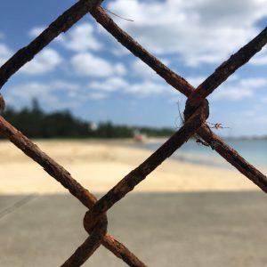 シンポジウム「沖縄県民投票を受けて」